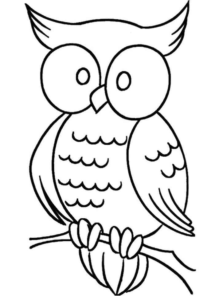 printable owl images owl coloring pages images printable owl
