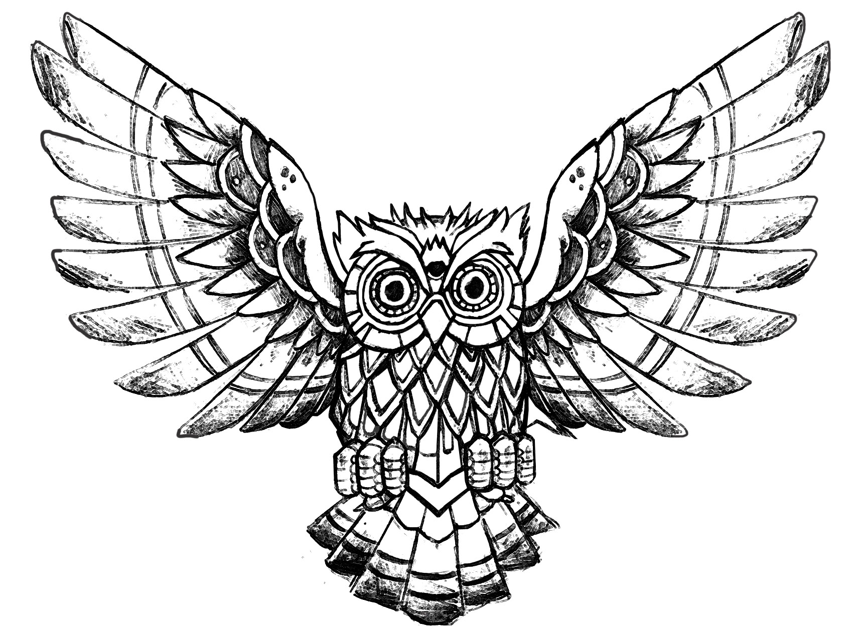 printable owl images owl raw drawing owls adult coloring pages images printable owl