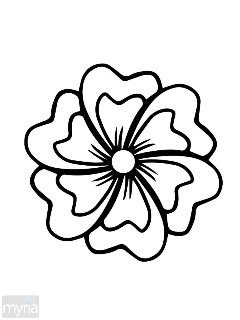 printable simple flower coloring pages flowers to color for kids flowers kids coloring pages pages printable simple flower coloring