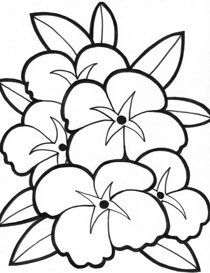 printable simple flower coloring pages free easy to print flower coloring pages tulamama flower simple pages printable coloring
