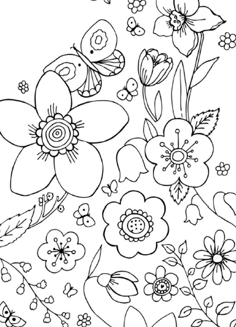printable simple flower coloring pages large print adult coloring book 2 big beautiful coloring printable pages simple flower