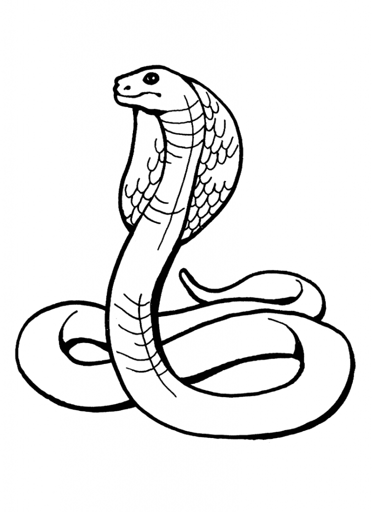 printable snake free easy to print snake coloring pages in 2020 snake snake printable