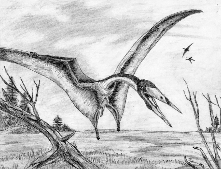 pterodactyl images early images of dinosaurs and prehistoric animals for schools crafts teachers parents and pterodactyl images
