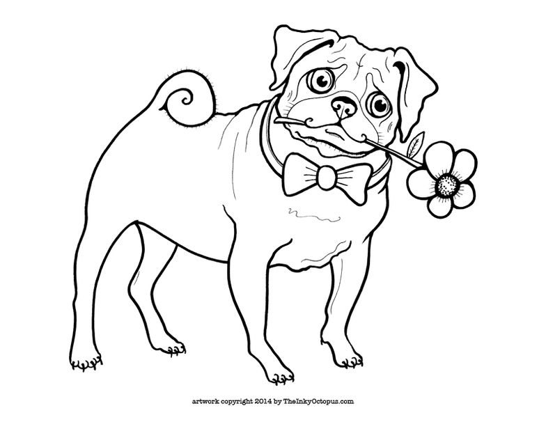 pug puppy coloring pages free pug coloring page puppy coloring pages dog pug pages puppy coloring