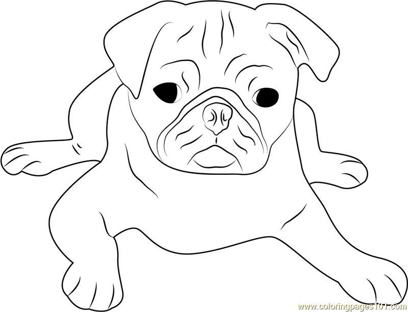 pug puppy coloring pages printable pug coloring pages coloring home pages coloring puppy pug