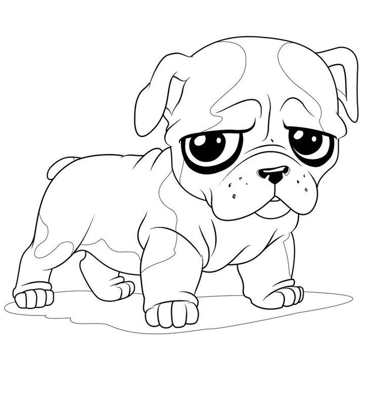 pug puppy coloring pages pug coloring pages best coloring pages for kids pug puppy pages coloring