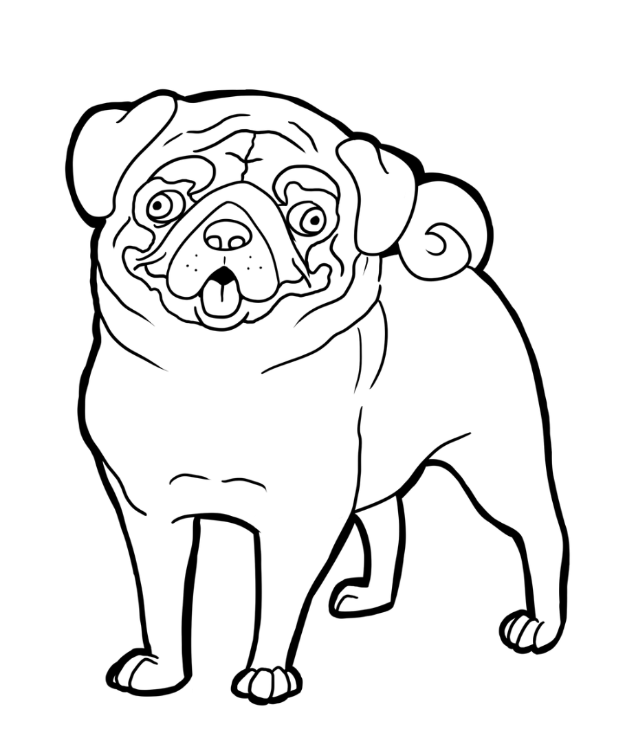 pug puppy coloring pages pug coloring pages to download and print for free pages coloring pug puppy