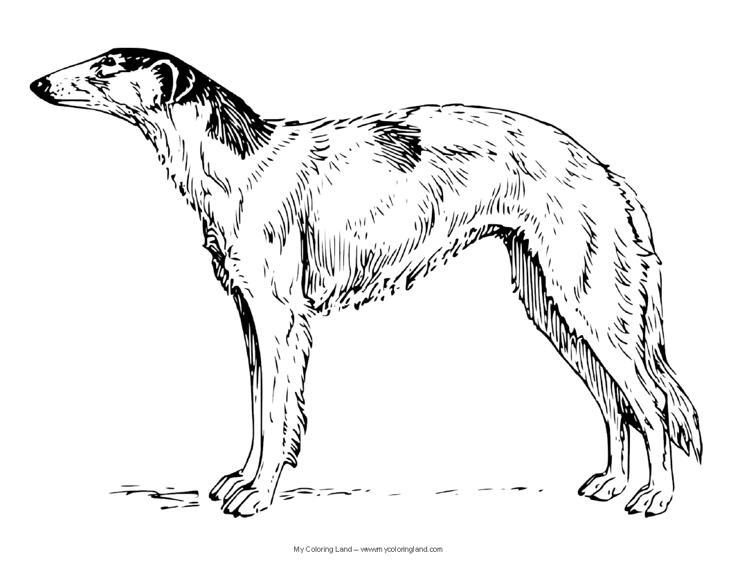 puppy realistic dog coloring pages dog breed coloring pages dog coloring pages puppy realistic