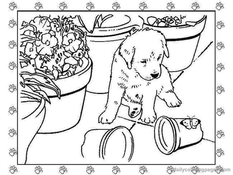 puppy realistic dog coloring pages realistic puppy coloring pages coloring home realistic coloring dog puppy pages