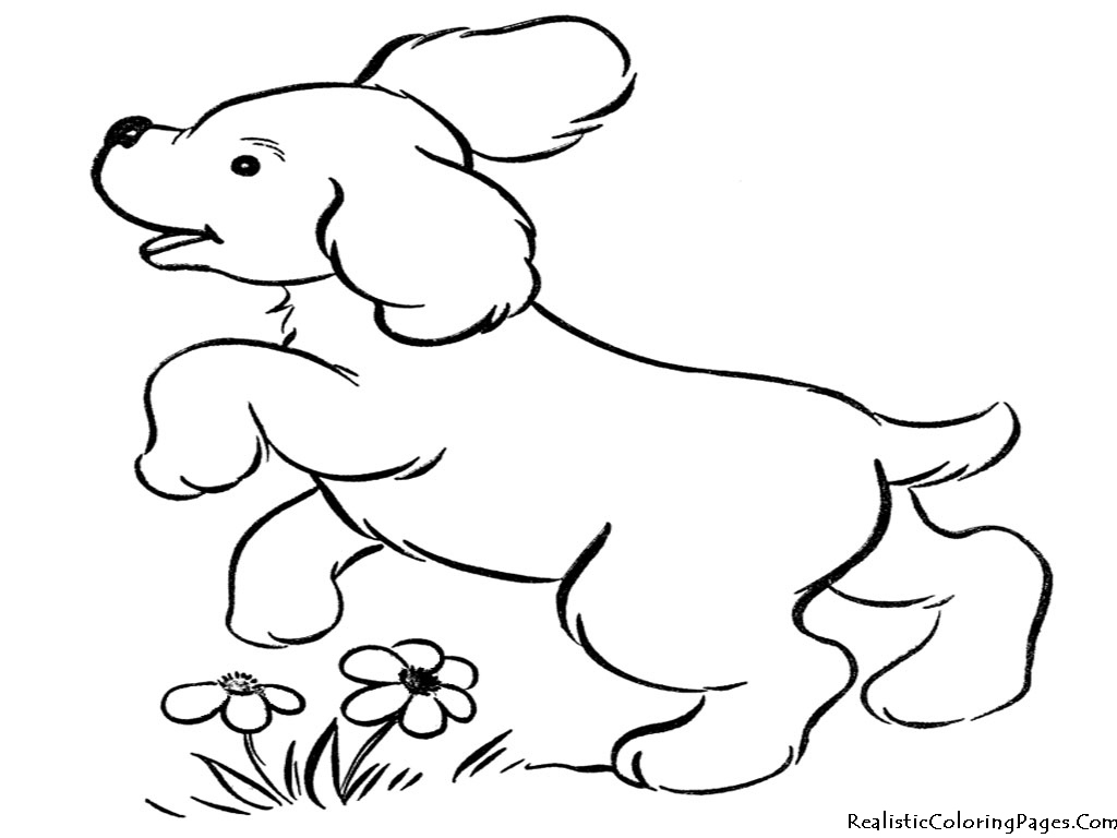 puppy realistic dog coloring pages realistic puppy coloring pages download and print for free realistic puppy coloring dog pages