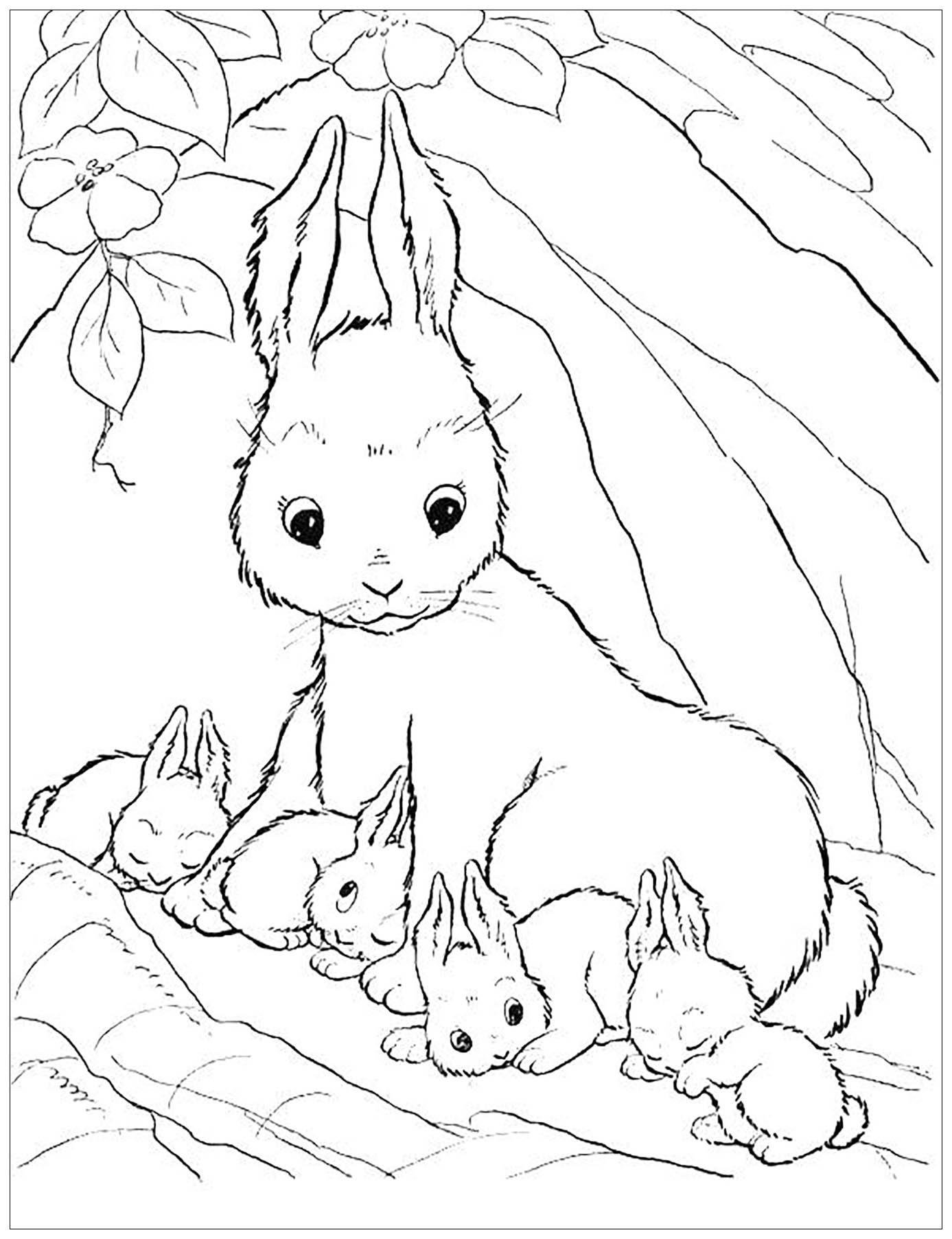 rabbit pictures for kids for colouring cute bunny coloring pages to download and print for free pictures for for rabbit kids colouring