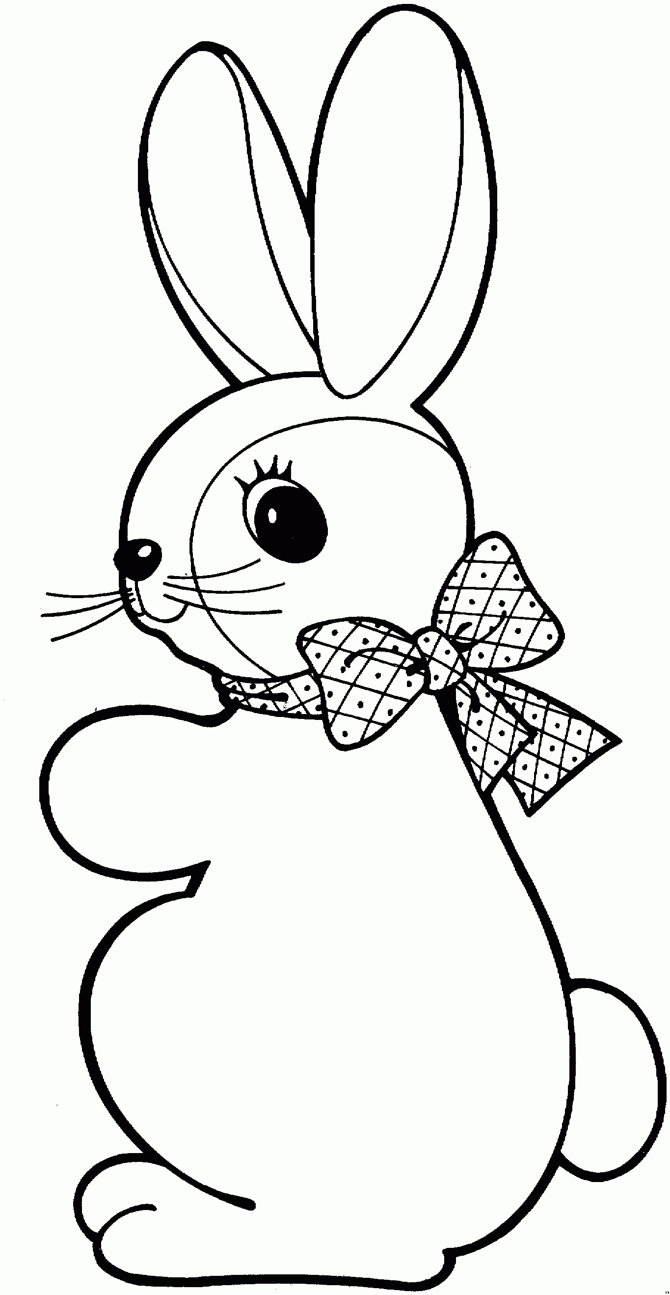 rabbit pictures for kids for colouring free printable rabbit coloring pages for kids rabbit for colouring for kids pictures