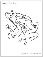 rainforest frog coloring pages poison dart frog coloring page frogs frog coloring pages rainforest coloring frog