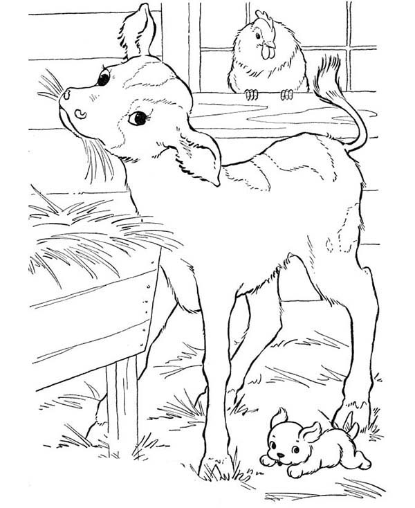 ranch coloring pages ranch coloring pages coloring ranch pages