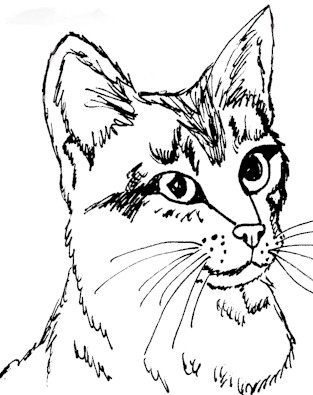 real kitty coloring pages cute kitten coloring page free printable coloring pages pages real coloring kitty