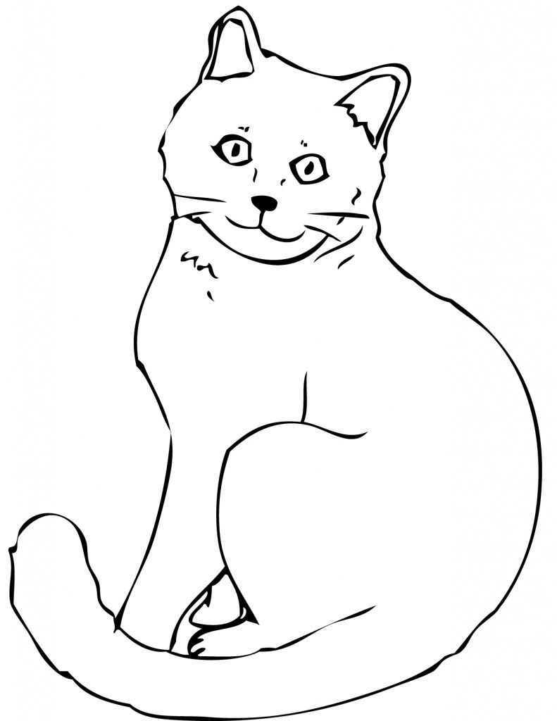 real kitty coloring pages real cat coloring pages at getcoloringscom free real pages kitty coloring