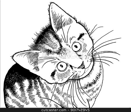 real kitty coloring pages sand cat kitten coloring page free printable coloring pages coloring pages real kitty