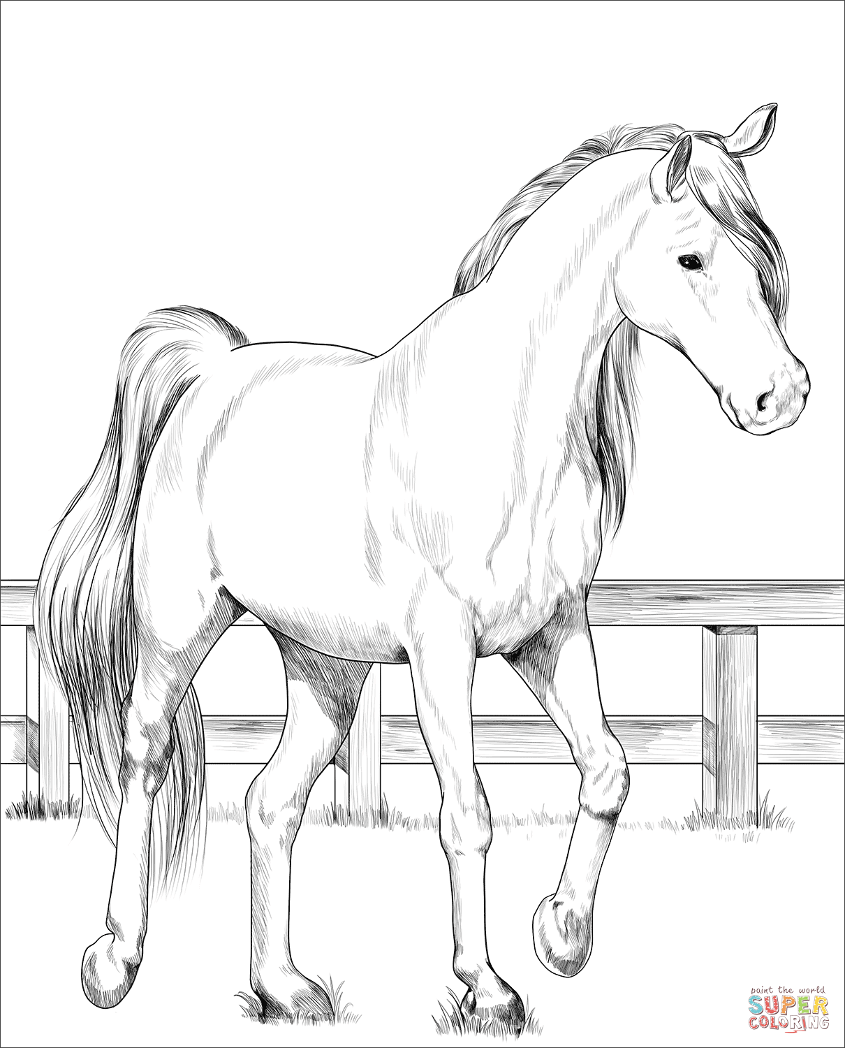 realistic horse coloring pages trakehner horse coloring page free printable coloring pages pages realistic horse coloring