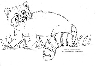 red panda face coloring page free printable panda coloring pages for kids panda coloring red page face