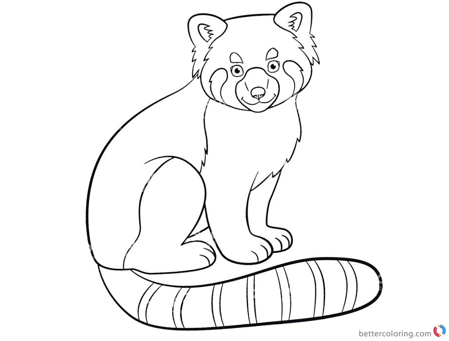 red panda face coloring page red panda drawing outline sketch coloring page coloring red face panda page
