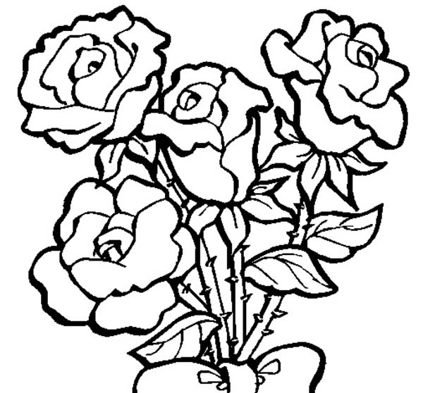 red rose rose coloring pages 72 best valentine printables images on pinterest kids rose coloring pages red rose
