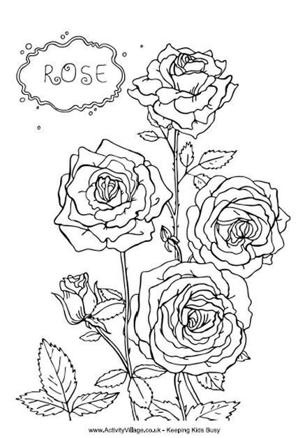 red rose rose coloring pages only roses coloring pages coloring rose red pages rose