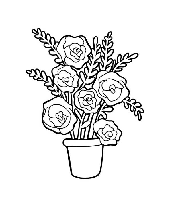 red rose rose coloring pages only roses coloring pages rose rose coloring red pages