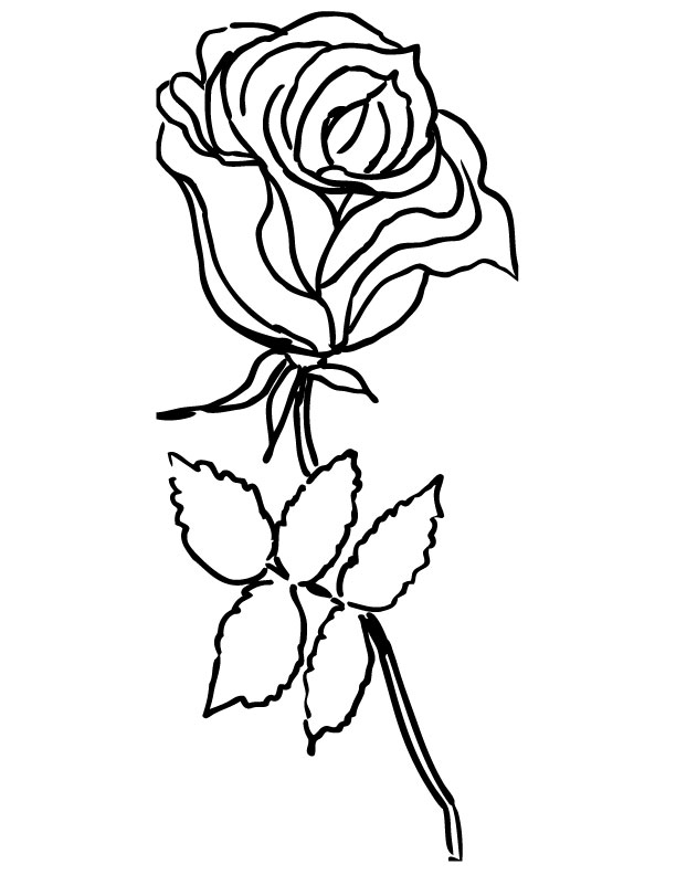 red rose rose coloring pages printable red roses coloring page coolest free printables pages coloring rose red rose