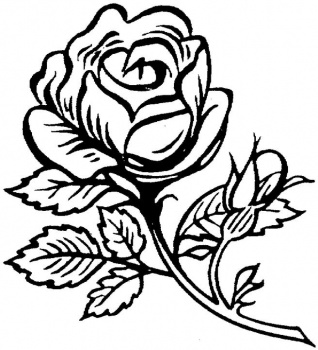 red rose rose coloring pages rose coloring pages printable coloring home pages coloring rose rose red