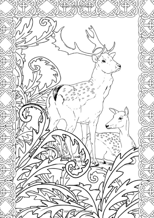 relaxation animal coloring pages 8 best images about art therapy on pinterest coloring animal relaxation pages