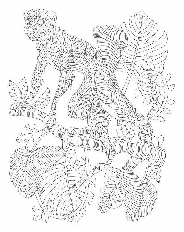 Relaxation animal coloring pages