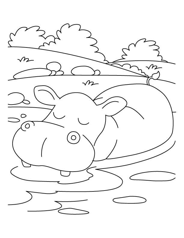 relaxation animal coloring pages hippopotamus in relaxing mood coloring pages download relaxation animal pages coloring