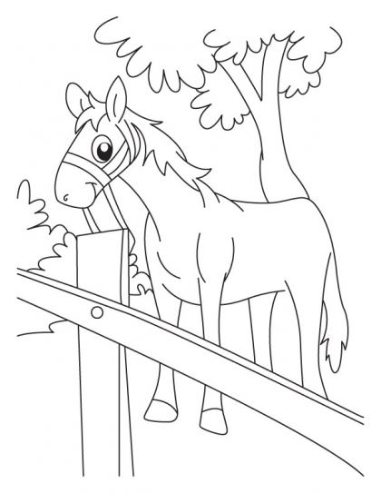 relaxation animal coloring pages relaxing time for horse coloring pages download free animal relaxation coloring pages