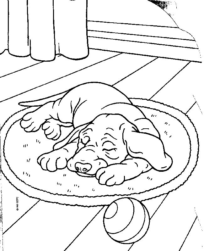rescue dog coloring pages 500 best images about animal coloring images on pinterest pages rescue dog coloring