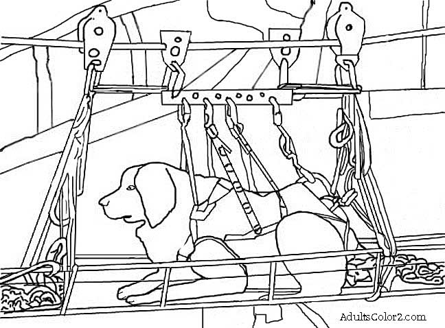 rescue dog coloring pages 9 11 drawing at getdrawings free download rescue coloring pages dog