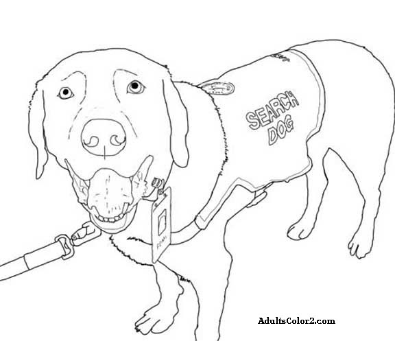 rescue dog coloring pages fbi coloring pages at getdrawings free download pages dog coloring rescue