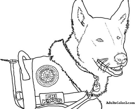rescue dog coloring pages working dogs crucial canines coloring pages rescue dog
