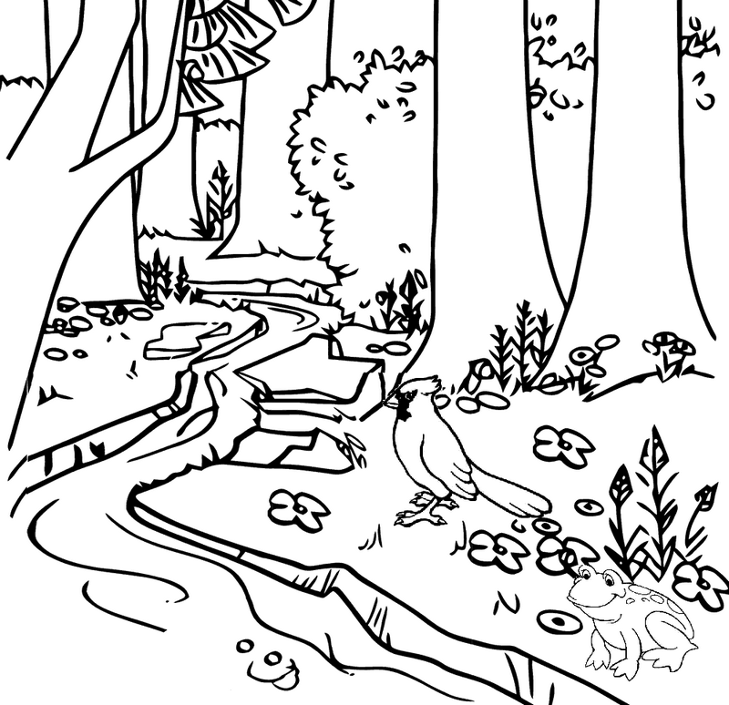 river coloring pages printable river 159265 nature printable coloring pages pages river printable coloring