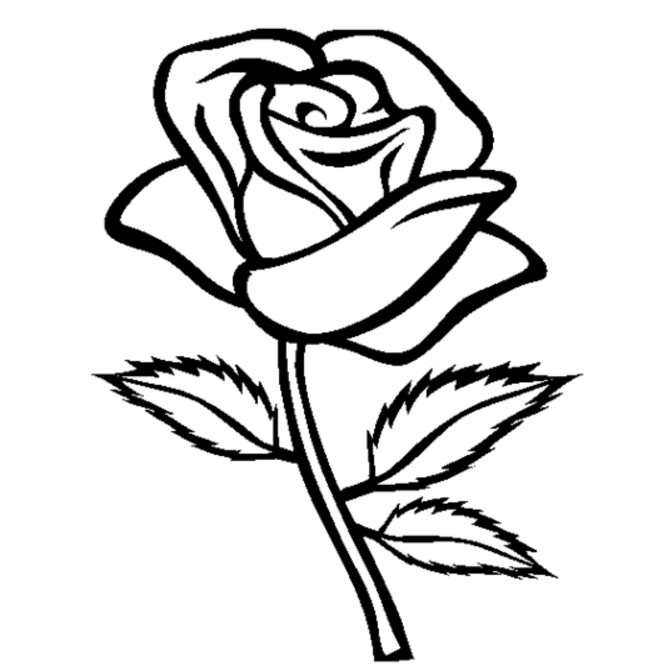 rose coloring book page free printable roses coloring pages for kids rose book page coloring