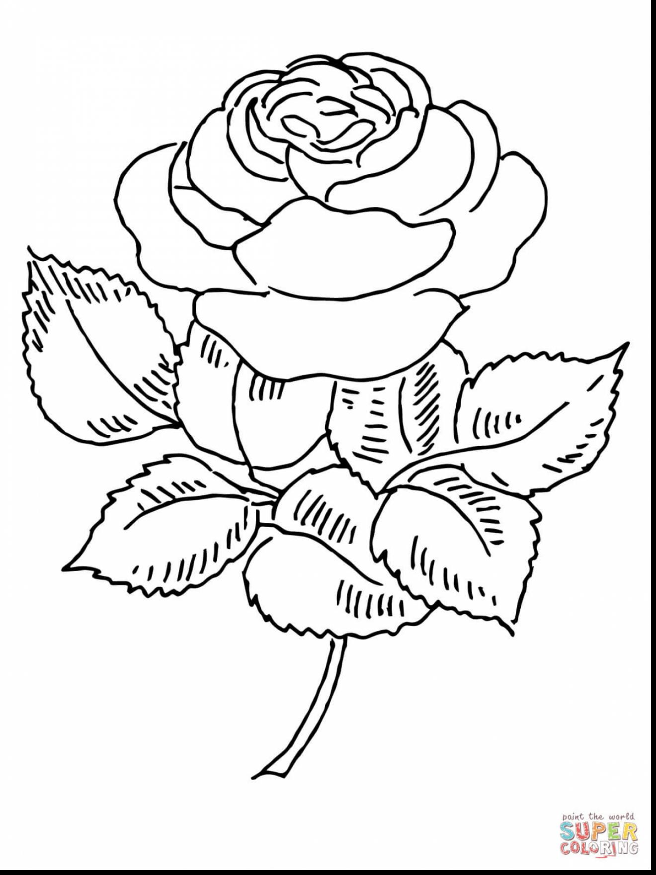 rose coloring book page get this online roses coloring pages for adults 88275 rose page book coloring