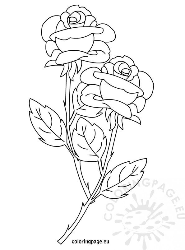 roses coloring coloring pages of flowers 2 coloring pages to print roses coloring