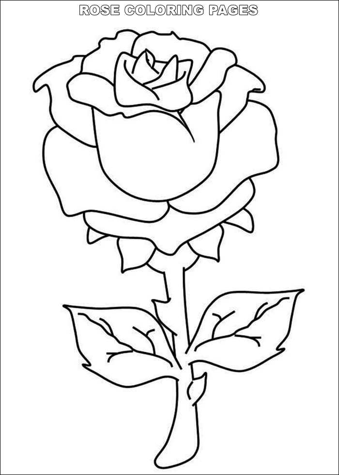 roses coloring rose coloring sheet turtle diary roses coloring