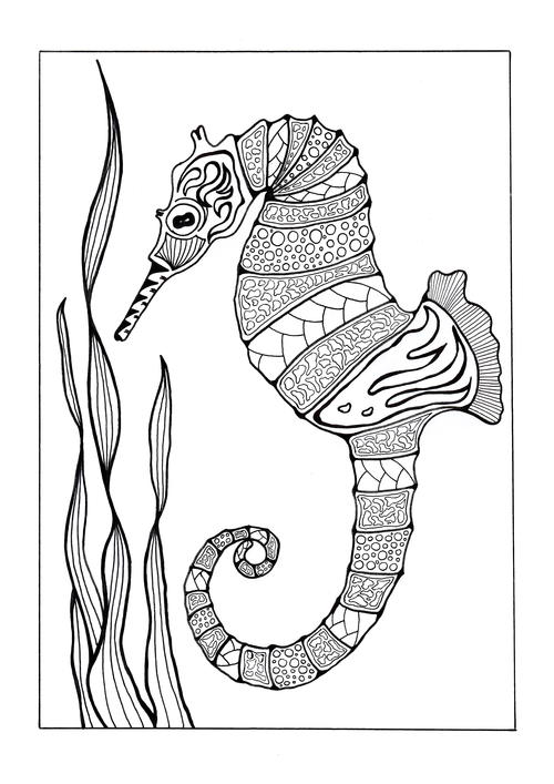 seahorse coloring pictures seahorse coloring pages to print coloring home pictures seahorse coloring
