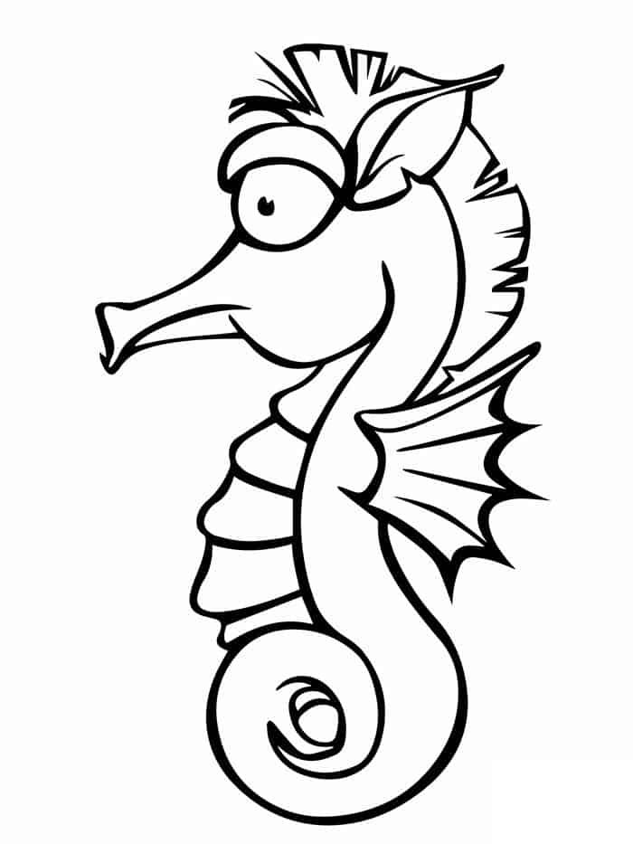 seahorse coloring pictures top 10 free printable seahorse coloring pages online seahorse pictures coloring