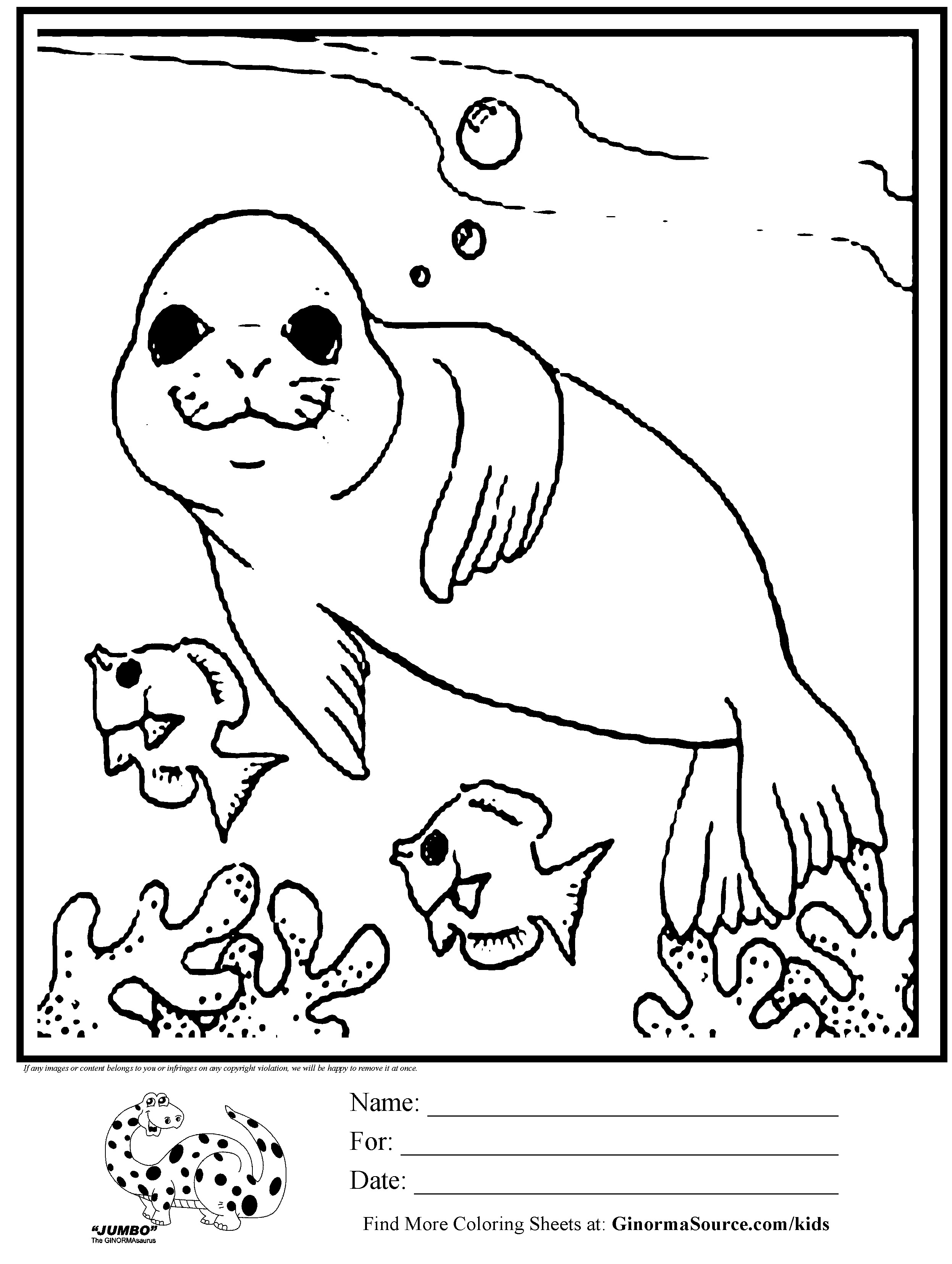 seal pictures to color seal coloring pages seal pictures to color