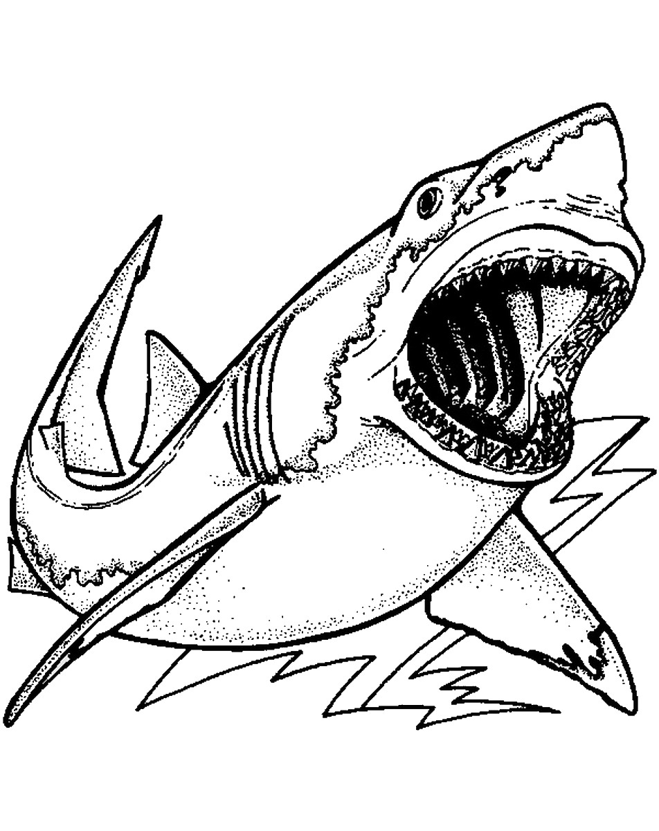 sharks pictures to color free easy to print shark coloring pages tulamama pictures sharks color to