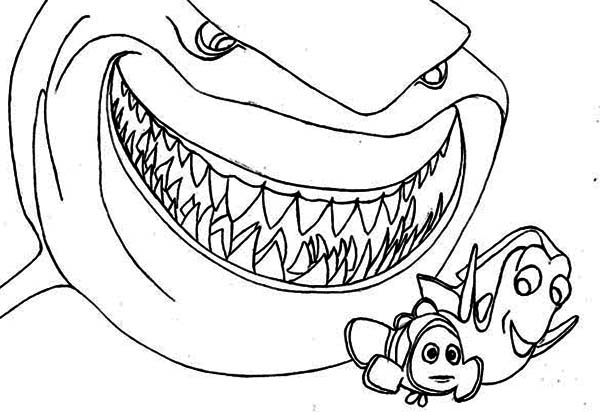 sharks pictures to color great white shark coloring pages downloadable and pictures color to sharks