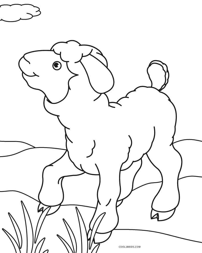 sheep coloring pages free printable free printable sheep coloring pages for kids sheep pages coloring free printable