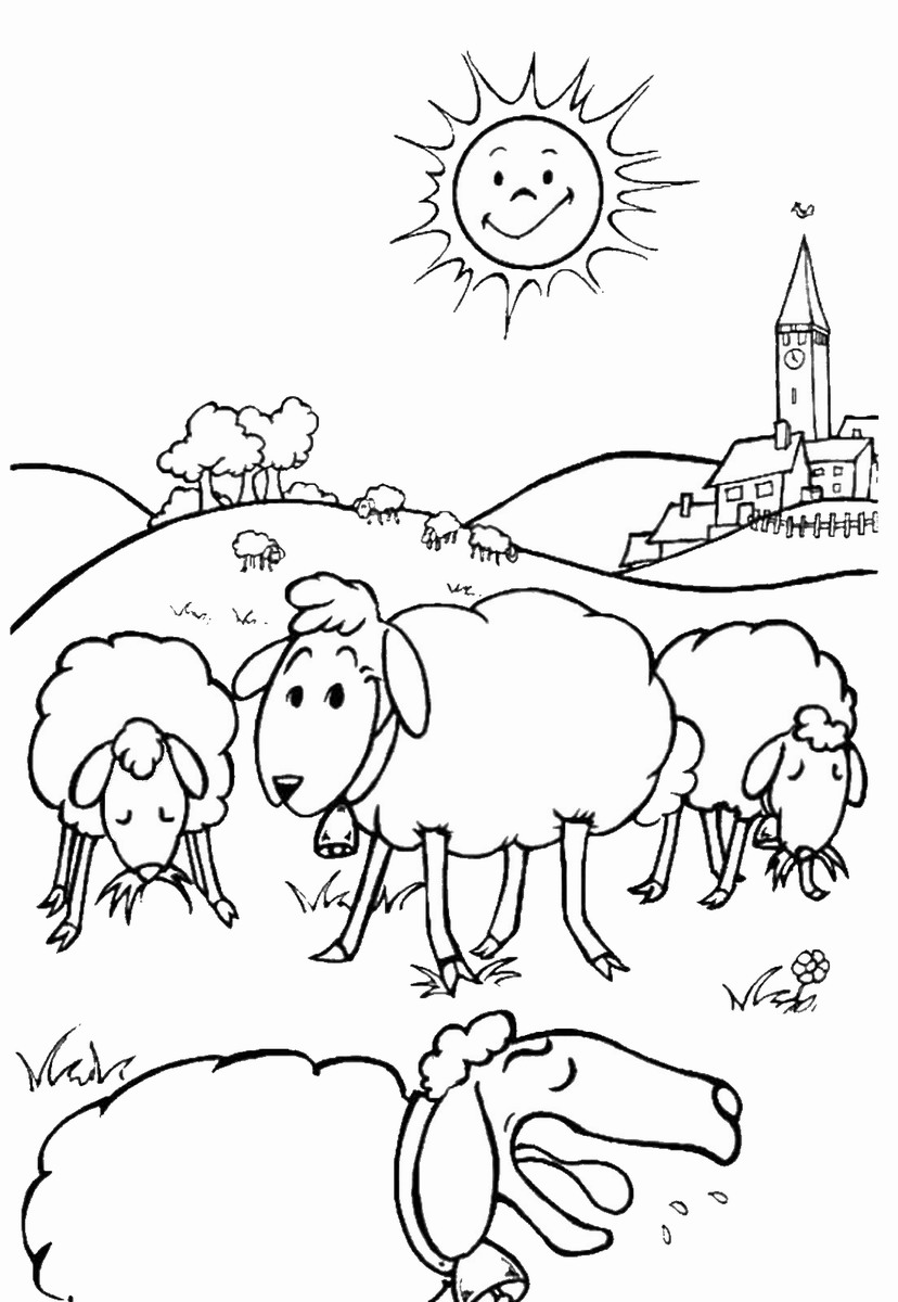 sheep coloring pages free printable free sheep pictures for kids download free clip art free sheep coloring printable pages free