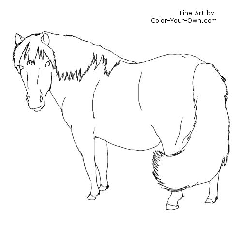 shetland pony coloring pages coloring pages pony shetland 2020 tekenen schilder pony pages coloring shetland